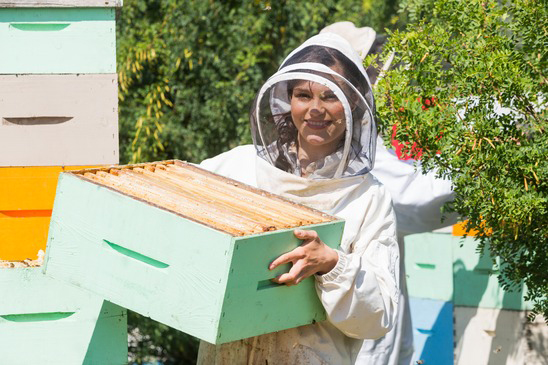 Beekeeper Working At Apiary